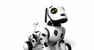 Roboter-Hund